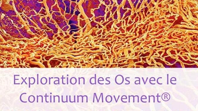 Exploration des Os avec le Continuum Movement® 18 mars 2018Bordeaux