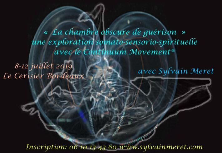 La chambre obscure de guérison,voyage somato-sensorio-spirituel avec le ContinuumMovement®