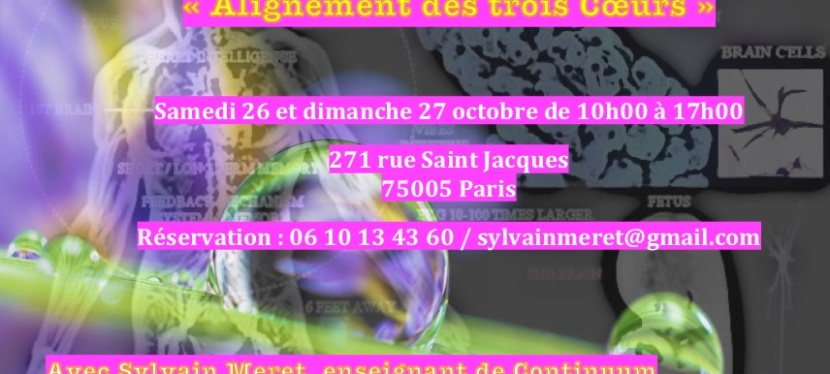 Stages de Continuum 26-27 octobre 2019 à Paris