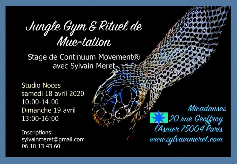Flyer Micadanses avril 2020 corrigé1