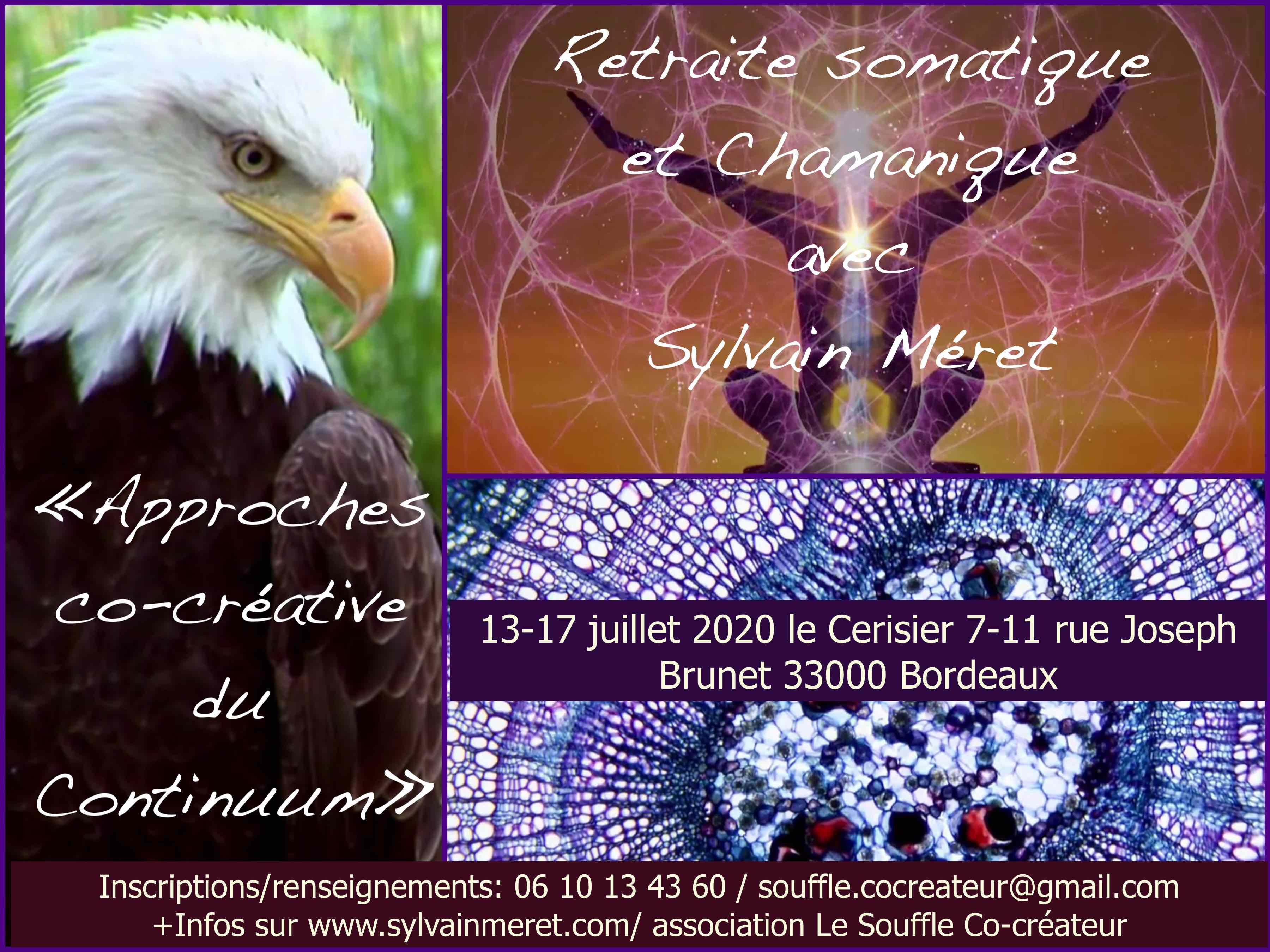 cocreative continuum juillet 2020 flyer
